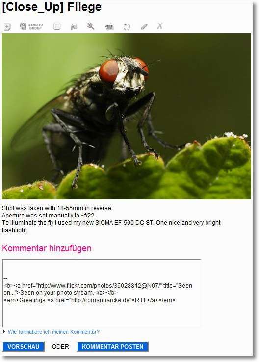 Flickr-kommentarform1