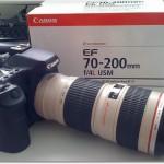 zurück mit dem Canon 70-200mm f4 L USM