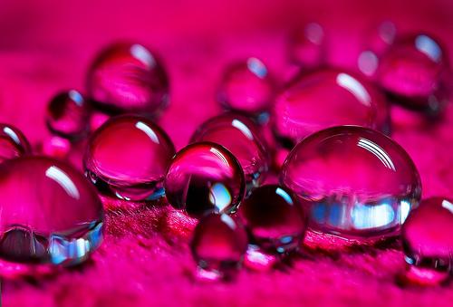 rote Wassertropfen Blatt